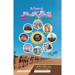 Piyare Nabi Kay Sunehry Safar - پیارے نبیﷺ کے سنہرے سفر
