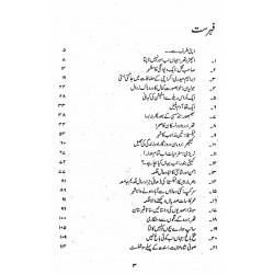 Nagri Nagri Phira Musafir By Abubakar Shaikh